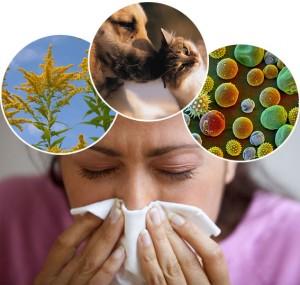 Насморк при контакте с аллергеном