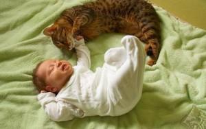 Новорожденный и кот