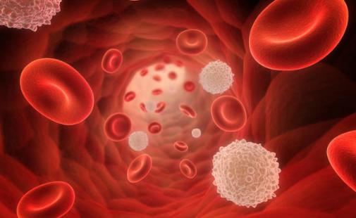 кровь на определение аллергии