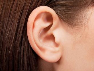 Анатомия уха человека: строение и основные функции